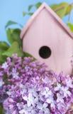 Vogelhuis, sering, de lente, nieuw huis. Royalty-vrije Stock Foto's