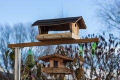 Vogelhuis - Vogelhuis in de Herfst Stock Foto's