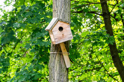 Vogelhuishuis voor vogels op een boom in het park Stock Foto's