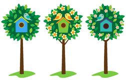 Vogelhuizen op bomen Stock Afbeeldingen