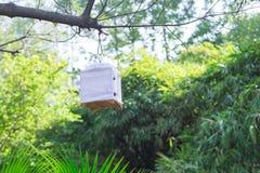 Vogelkäfig Stockbilder