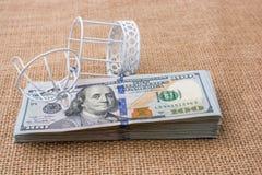 Vogelkäfig auf Bündel von US-Dollar Banknote Stockfotos