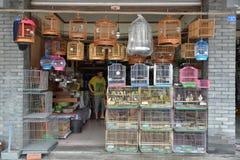 Vogelkäfige in Haustier shop〠' Lizenzfreie Stockfotos
