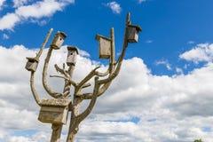 Vogelkästen auf hölzernem kuriertem Baum Lizenzfreies Stockfoto