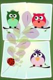 Vogelkarte Stockfoto