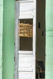 Vogelkooi in Trinidad, Cuba Stock Foto