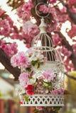 Vogelkooi in tuin Stock Afbeelding