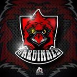 Vogelkopf auf rotem Schild Logo für irgendwelche Sportteamkardinäle lizenzfreie abbildung