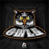 Vogelkopf mit glänzenden Augen Logo für irgendwelche Sportteameulen auf Dunkelheit lizenzfreie abbildung