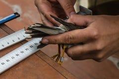 Vogelkunde, die Studie von Vögeln lizenzfreie stockfotos