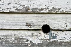 Vogelloch in einer Wand Lizenzfreie Stockfotos