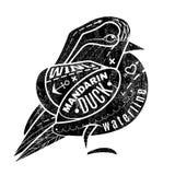Vogelmandarin Eend stock illustratie