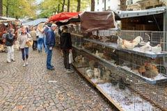 Vogelmarkt Antwerpen Lizenzfreies Stockbild