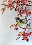 Vogelmeise auf einer Ebereschenniederlassung lizenzfreie stockbilder