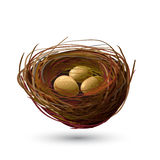 Vogelnest en gouden Eieren Royalty-vrije Stock Afbeeldingen