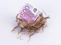 Vogelnest innerhalb der Banknote des Euros 500 lokalisiert auf weißem Hintergrund Stockfoto
