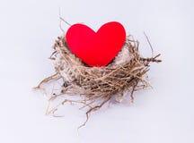 Vogelnest mit dem Herzen lokalisiert auf weißem Hintergrund Design elemen Lizenzfreie Stockfotografie