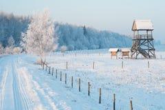 Vogelobservatietoren in de winter Royalty-vrije Stock Foto's