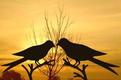 Vogelpaare auf Baum im Sonnenaufganghintergrund Stockfoto