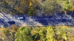 Vogelperspektive über dem Auto, das durch bunten Wald reist stock video