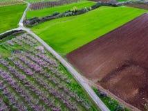Vogelperspektive über landwirtschaftlichen Feldern mit blühenden Bäumen aerial Lizenzfreies Stockfoto