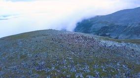 Vogelperspektive auf Bergspitze mit Seehintergrund Erstaunliche Gebirgslandschaft mit Teichen stockbilder