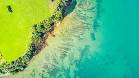 Vogelperspektive auf einem Ackerland auf dem Ufer des sonnigen Hafens Whangaparoa-Halbinsel, Auckland, Neuseeland Lizenzfreie Stockfotos