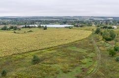 Vogelperspektive auf Feldern und Wald auf die Oberseite des Dachs Lizenzfreies Stockfoto