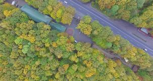 Vogelperspektive Autumn Forest With Road stock video footage