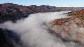 Vogelperspektive der überraschenden Landschaft der Karpatenberge Morgennebel streute den Fluss aus und schlägt die Berge und die  stock footage