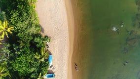 Vogelperspektive in der Bewegung von den Leuten, die im Meer nahe sandigem Strand mit treesin Sri Lanka schwimmen stock footage