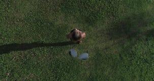 Vogelperspektive der Frau stehend auf dem Gras, während Drohne die Sonnenbrille von ihrem Gesicht entfernt stock footage