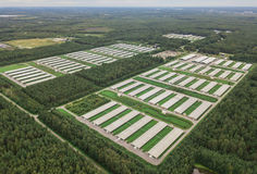 Vogelperspektive der Geflügelfarm Stockbilder