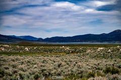 Vogelperspektive der Hunewill-Ranch nahe Bridgeport, Kalifornien stockfoto