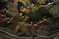 Vogelperspektive der Karpatengebirgslandschaft am Herbstmorgen Stockfotos