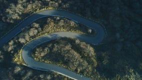 Vogelperspektive der leeren Fahrbahn der Kurve im grünen Wald stock video footage