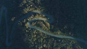 Vogelperspektive der leeren Fahrbahn der Kurve im grünen Wald stock footage