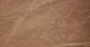 Vogelperspektive der Nazca-Linien - Affe Stockfoto