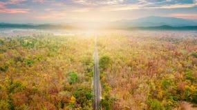 Vogelperspektive der Straße im Herbstwald bei Sonnenuntergang Erstaunlicher Landscap Stockfotos