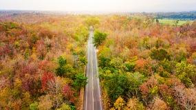 Vogelperspektive der Straße im Herbstwald bei Sonnenuntergang Erstaunlicher Landscap Stockbilder