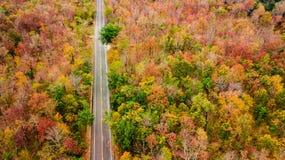 Vogelperspektive der Straße im Herbstwald bei Sonnenuntergang Erstaunlicher Landscap Lizenzfreies Stockfoto