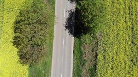 Vogelperspektive der Straße zwischen Rapsfeldern stock video footage
