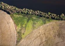 Vogelperspektive der Vegetation in Form von Schambein Stockbild