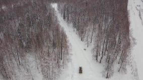 Vogelperspektive des Behälters fahrend durch den Winterwaldpanzer im Waldbehälter unter den Schnee stock footage