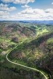 Vogelperspektive des Black Hills Stockfotografie