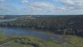 Vogelperspektive des Flusses bedeckt durch Gras und Segge gegen blauen bewölkten Himmel clip Schöne Landschaft stock video footage