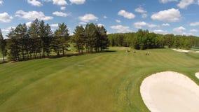 Vogelperspektive des Golfplatzes stock video