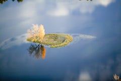 Vogelperspektive des Herbstbaums auf Teich mit Reflexion nahe Sanford, Maine Stockbilder