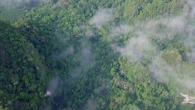 Vogelperspektive des Kalksteins schaukelt in den Nebel, der mit dem üppigen tropischen Grün bedeckt wird Draufsicht von Bergen in stock video