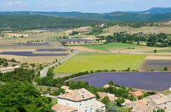 Vogelperspektive des Lavendelfeldes in Frankreich lizenzfreie stockbilder